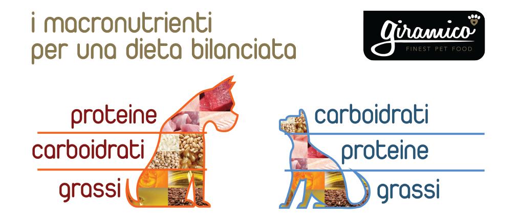 I macronutrienti e la dieta bilanciata
