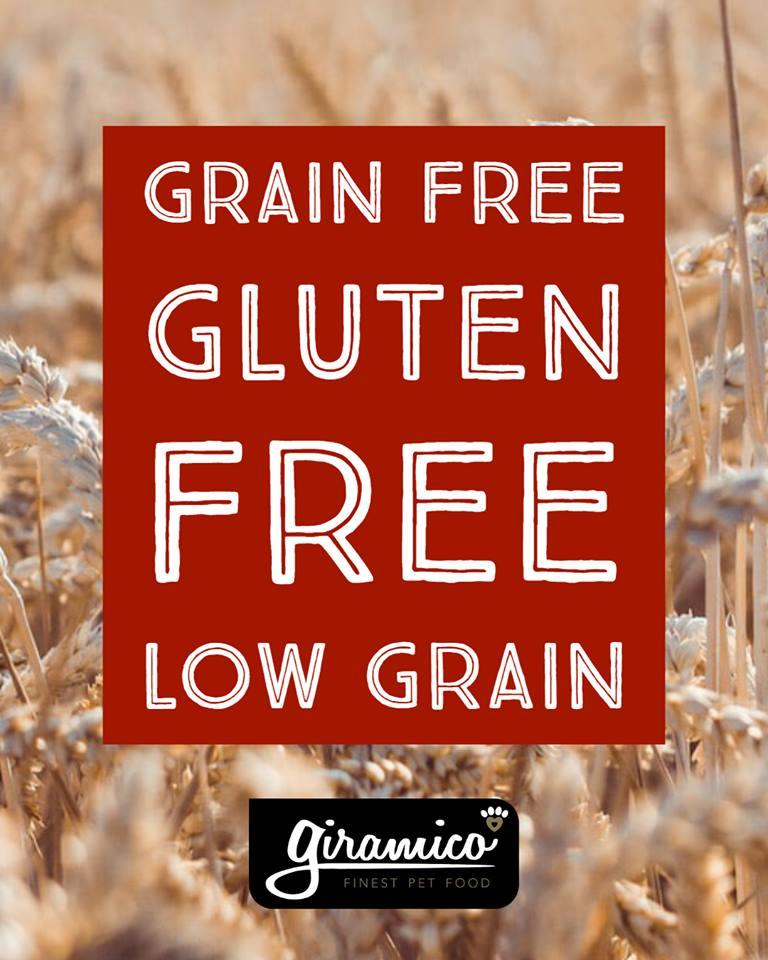 alimentazione cane grain free